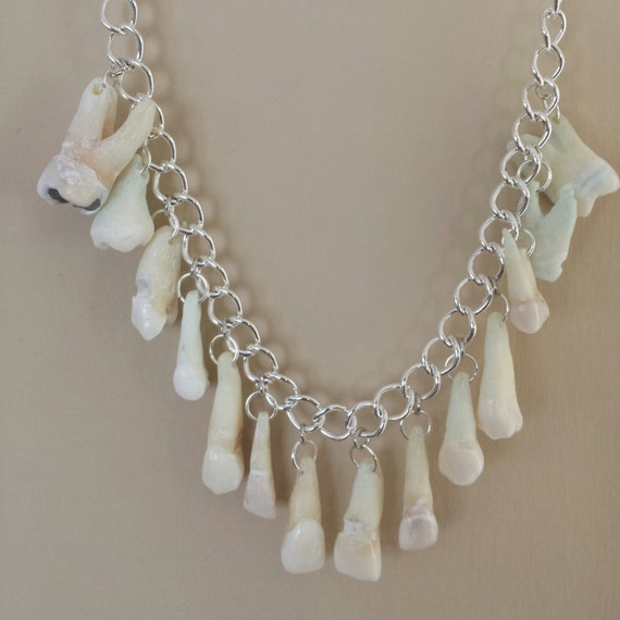 the REAL Toothy Grin necklace