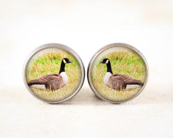 Canadian Geese Earrings - Canada Goose Jewelry, Bronze Post Earrings