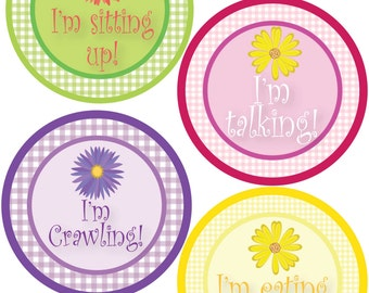 ADD ON My First Stickers for Baby, My First Stickers  - Gingham & Flowers -  Baby My First Stickers -Baby Shower Gift - Baby
