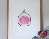 Fig A3 giclee watercolour print