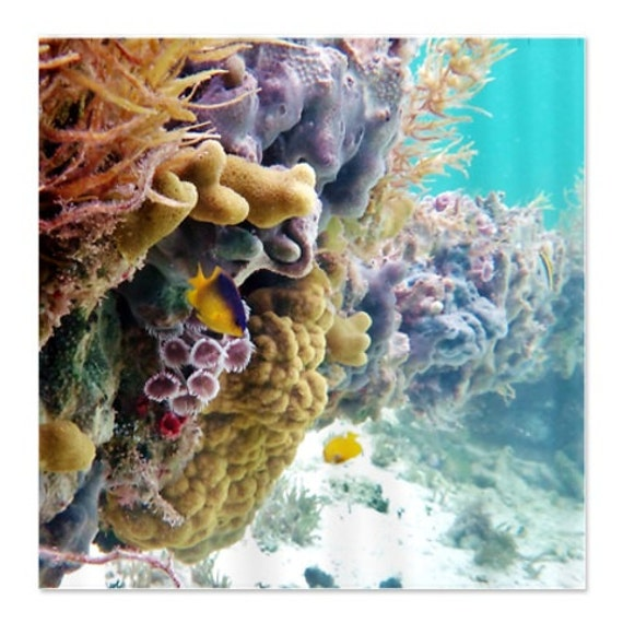 Shower curtain underwater ocean decor coral reef by for Coral reef bathroom decor