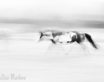 Horse Photography Abstract Art