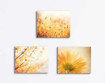 3 Piece Canvas Set, yellow gold photography three nature wall art golden gallery wrapped canvas botanical pictures colorful photographs