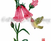 "Watercolor Chinese Brush Painting Card ""Foxglove and Hummingbird"""