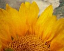 Sunflower wall art, yellow flower art, rustic country decor, rustic flower art, sunflower decor, farmhouse decor, romantic floral print