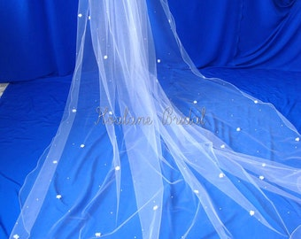 Cathedral Veil with Flowers and Pearls, Cathedral Length Veil, Bridal veil