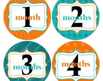 Teal and Orange Baby Stickers, Month to Month Stickers, Photo Prop Stickers , Baby Stickers, First Year Stickers (101)