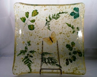 Vintage Lucite Encased Real Butterfly, Shell and Pressed Ferns Serving Plate Dish.  Odd and Beautiful,  Large 9.5 Inch Sq x 1.5 Deep.