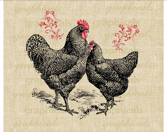Black chicken rooster hen instant clip art Digital download image for iron on transfer to fabric paper pillows burlap decoupage No.2114