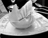 Seahorse & Starfish White Porcelain Serving Platter