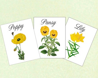 Yellow Wedding Flower Table Cards, Table Tents, Wedding Table Cards, Wedding Table Names