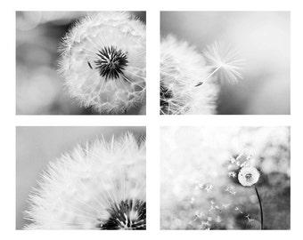 black and white photography botanical print set of 4 prints dandelion decor photography fine art dandelion wall art black and white prints