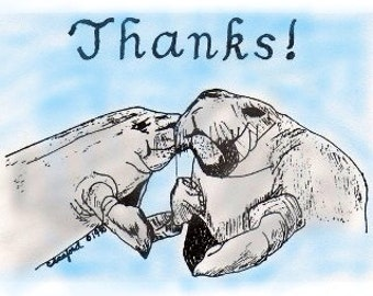 Manatee Color Thank You Cards