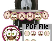 Owl highchair banner, Look Whoo's 1 Highchair Banner Girl Owl I am 1 High chair Banner Girl 1st birthday party (printable) DIY Digital File