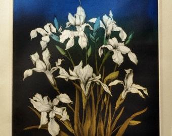 Vintage Color Etching - Irises at Twilight - Signed Artist's Proof Artwork - Botanical Floral Print