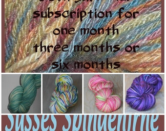 Handpainted Sock Yarn Colors of the Month Club