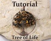 Tree of Life: TUTORIAL