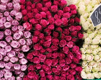 Paris Market Photography -  Roses for Sale, French Home Decor, Large Wall Art