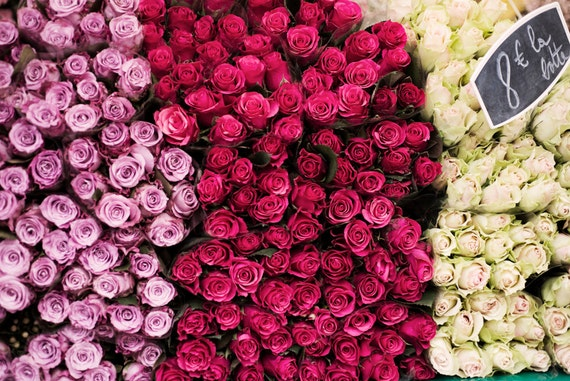 Paris Market Photography Roses For Sale French Home Decor
