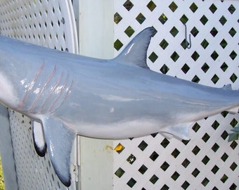 Great White Shark Statue 3 feet