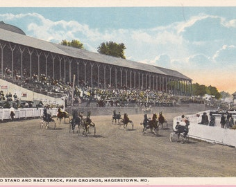"""Ca. 1920s """"The Race Track"""" at Winchester Cathedral Topographical Picture Post Card - 368"""
