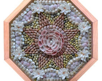 "Nantucket Sailor's Valentine Seashell Mosaic Design ""Fleur de Rosette"""