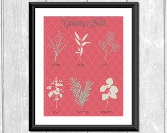 Culinary Kitchen Herbs Designer Original 8 x 10 Art Prints - Rose Mint Taupe Frame It Yourself