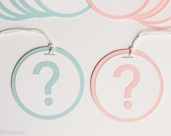 Gender Reveal Baby Shower - Question Mark Tags -  Pink and Blue Baby Shower Decorations - Set of 12