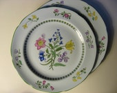 SPODE Summer Palace Fine Stoneware. TWO Dinner Plates in Summer Palace pattern