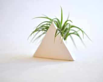 Trending Triangle Mini Air Plant Planter White and Tillandsia Plant