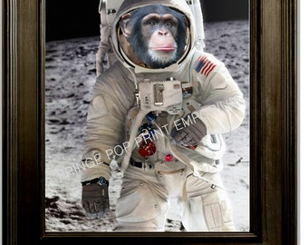 chimpanze astronaut - photo #19