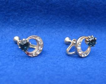 Sapphire Rhinestone Siver Earrings