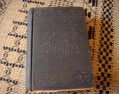 Vintage 1895 Book The Business Guide Nichols Letters Scripts Font Calligraphy Resolution How to Succeed