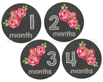 Baby Month Milestone Stickers, Monthly Baby Stickers, Baby Girl Stickers, Baby Month Stickers, Chalkboard Monthly Stickers, Roses