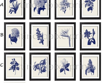 Navy Creme Botanical Floral Damask Wall Art Prints  - Set of Any (12) 8x10 prints