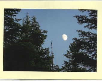 MOONLIT NIGHT thru the TREES - Original Outdoor Scenery / Local Artist Digital Photo - Blank Photo Card Twin Fold Design - In Stock