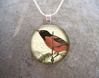 Bird Jewelry - Glass Pendant Necklace - Victorian Bird 17