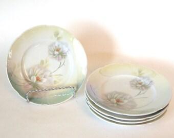 Antique Art Deco China Porcelain Plates Green Ombre Floral Lusterware 6 Inch Dessert Plates Set | Leuchtenburg China - Set of 5  Germany
