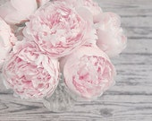 Large Wall Art, Flower Photography, Pink Peonies, Pink and Gray, Shabby Chic Flower Art, Nursery Decor, Fine Art Photography Print