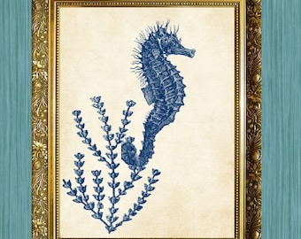 Original Blue Sea Horse and Sea Fan Art Print Bathroom Print 8 x 10 Ocean Art Nautical Print Sea Life Print HHP Original Design