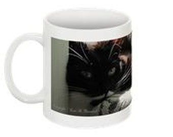 Cat In The Sun 10 oz Coffee Mug