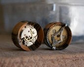 SteamPunk Clockwork Plugs - No1shape