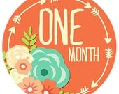 Baby Monthly Stickers, Baby Girl Baby Shower Gift, Baby Month Stickers, Monthly Baby Milestone Stickers, Bodysuit Clothing Stickers 871
