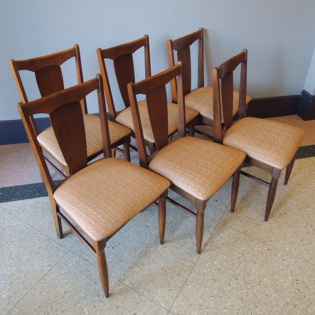 Surfboard Style Mid Century Garrison Dining Chairs Set of 6