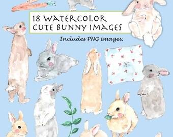 CLIP ART- Watercolor Cute Bunny Set. 18 Images. Digital Download. Rabbit. Carrot. Garden. Pillow.