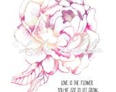 Peony Flower- Art Print, John Lennon, Flower