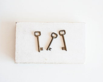 Old Metal Skeleton Keys - set of 3, Vintage Skeleton Keys, Rustic Home Decor Finds, Steampunk Rustic Keys, White Cream Medical