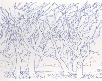 central park New York promenade trees pen and ink drawing original watercolor paper sketch autumn leaves