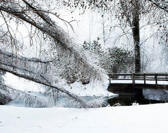 Art, Photography, Wall Art, Nature, Home Decor,Fine Art Print,Ada,Park,Photo,Grand Rapids,Michigan.Winter, Winter Print, Snow Art, Snow, Ice