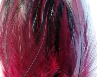 Cruelty Free Rooster Feathers - Wine